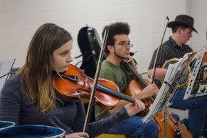 New orchestra aspires to hit high note on campus