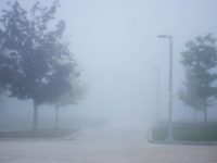 Fog becomes dangerous for student commuters